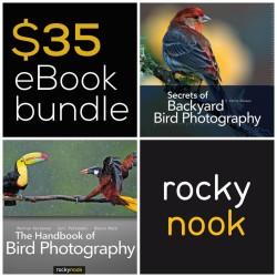 ebook bundle_bird photography