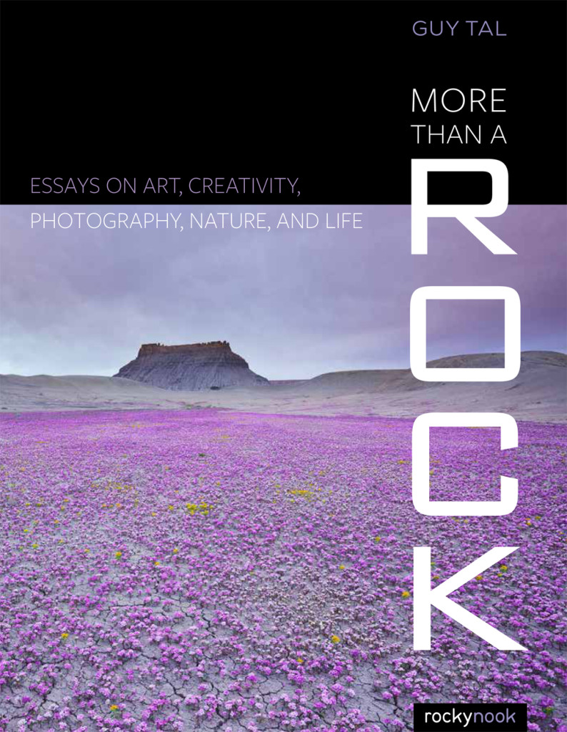 More-that-a-Rock-cover